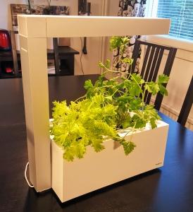 Herbie Indoor Garden - helppoa sisäviljelyä